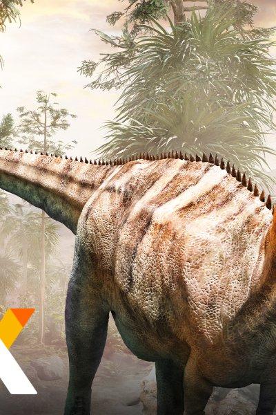 Tyrannosaurus Rex Photo