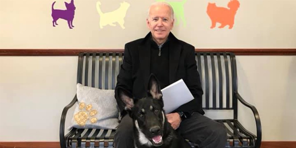 Joe Biden and his rescue dog Major